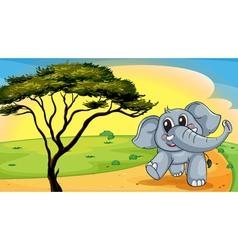 Elephant under a tree vector image