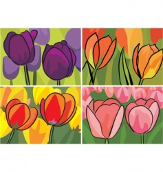 tulip pictures vector image