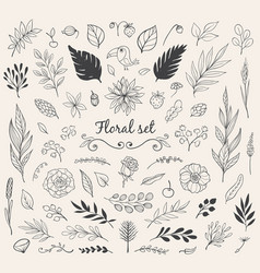set of nature doodles vector image vector image