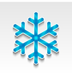 Snowflake of ice crystals vector