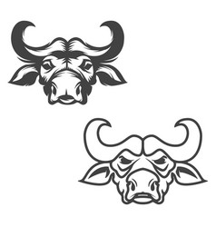 Set of buffalo heads isolated on white background vector
