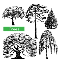 Trees hand drawn black icons set vector