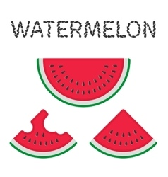 Watermelon slices vector image