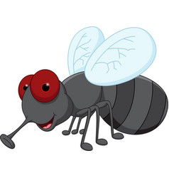 cute fly cartoon vector image vector image