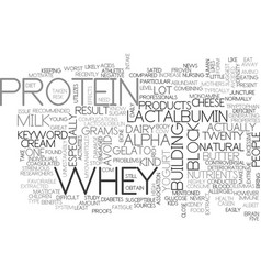 Whey protein text word cloud concept vector