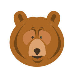 bear grizzly animal beast predator image vector image