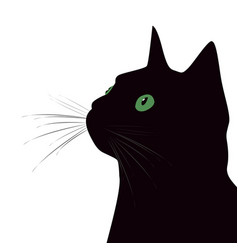 black cat with green eyes on white background vector image vector image