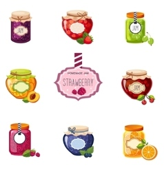 Different berry and fruit jam jars set of vector