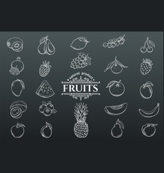 hand drawn fruits icons set vector image