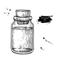 Essential oil glass bottle hand drawn vector