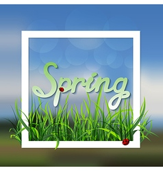 Spring landscape with grass vector