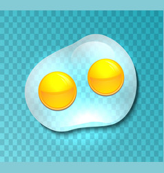 a transparent fried eggs vector image