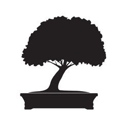 black bonsai tree vector image