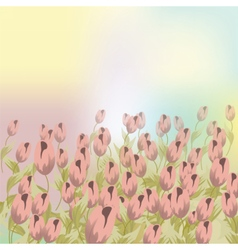 Pale pink Tulips flower composition vector image vector image