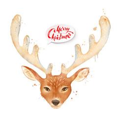 christmas watercolor of reindeer vector image vector image
