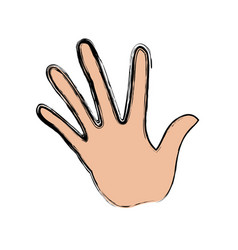 Hand human with five finger show palm vector