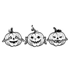 three wise halloween pumpkins vector image