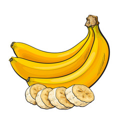 Ripe banana bunch and slices sketch vector