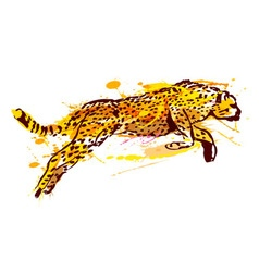 Colored hand sketch leaping jaguar vector