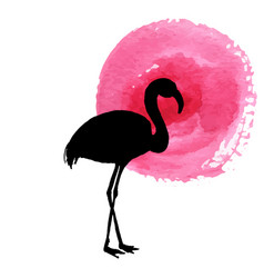 flamingo in grass silhouette vector image