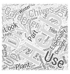 Herb gardening word cloud concept vector