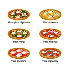 Set of sort of pizza with different ingredients vector