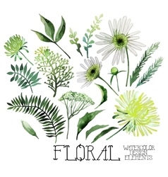 Watercolor green floral collection vector