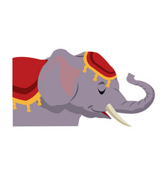 Circus elephant with clothes decoration show vector