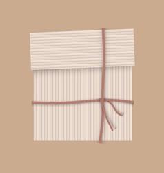 Box stripe vector image