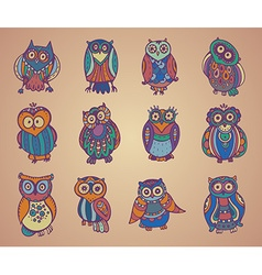 Collection of cute colorful owls vector