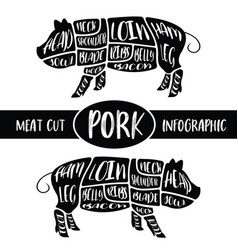 meat cut infographic pig pork parts graphic vector image