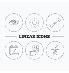 Bone fracture weight loss and trichology icons vector