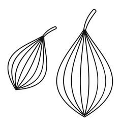 Ajwain spice icon outline style vector