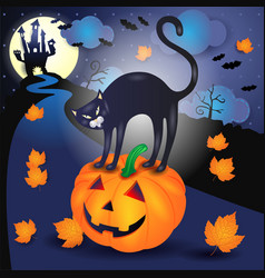 halloween background with black cat and pumpkin vector image