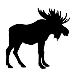 moose silhouette 001 vector image vector image