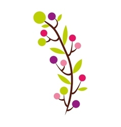 flower plant decoration isolated icon vector image