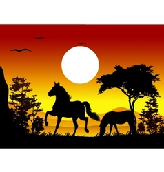 horse silhouettes with landscape background vector image vector image