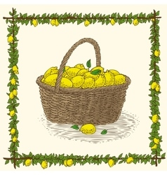 Wicker basket with ripe yellow lemons vector