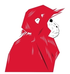 Chinese New Year Monkeys vector image