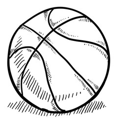 doodle basketball vector image vector image