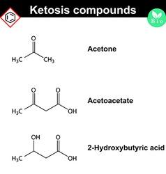 Ketone bodies - marker of diabetes vector