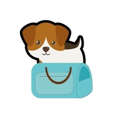 Puppy little portrait lovely blue pet carrier bag vector