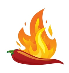Isolated red hot chilli pepper with fire vector image