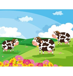 three cows vector image