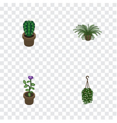 Isometric plant set of blossom peyote flower and vector