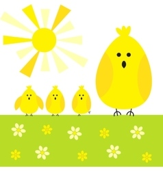 Chicken sunny background vector image vector image