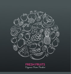 hand drawn fruits for farmers market vector image