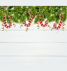 Spruce twigs background vector