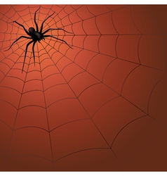 Big dark spider on the web vector