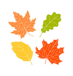 four color leaves vector image